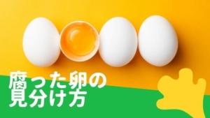 腐った卵の見分け方と捨て方!ゆで卵も腐る?賞味期限切れも食べられる?