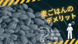 麦ごはんのデメリットは?糖質やカロリー、ダイエット効果、消化に悪いと言われる理由