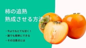 柿の追熟方法!柔らかくし熟成させ柿を甘くする方法とは