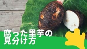 里芋が腐るとどうなる?賞味期限は?冷凍保存や日持ちする保存方法を解説