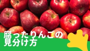 りんごが腐る時の見分け方と保存方法!冷凍保存や賞味期限について