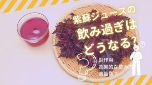 紫蘇ジュースの飲み過ぎはどうなる?効果や太る原因を解説