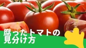 トマトが腐る/腐ったトマト・傷んだトマトの見分け方と賞味期限